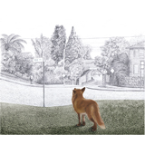 Narelda_Joy_Illustration_3D_collage_fox1