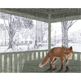 Narelda_Joy_Illustration_3D_collage_fox2