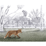 Narelda_Joy_Illustration_3D_collage_fox3